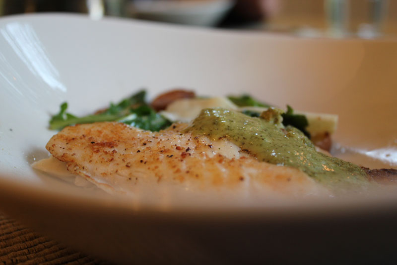 tilapia with lemon verbena cream sauce