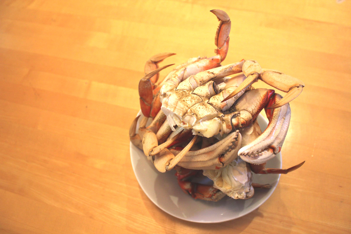 Stack of Steamed Fresh Live Crabs